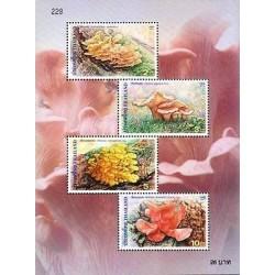 E)2001 THAILAND, MUSSHROOMS, SCHIZOPHILLUM COMMUNE/LENTINUS GIGANTEUS/PLEUROTUS