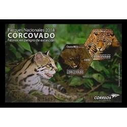 E)2014 COSTA RICA, CORCOVADO, NATURAL PARK, ANIMALS, ENDANGERED FELINES