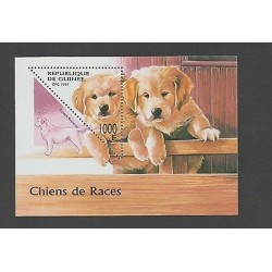 O) 1997 GUINEA, DOG, TRIANGLE, SOUVENIR MNH