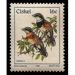 E)1987 CISKEI, BIRDS, INGEDLE , BATIS CAPENSIS, MNH