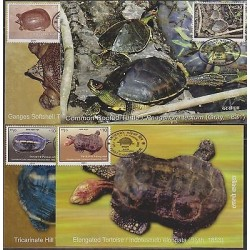 E) 2011, NEPAL, MAXIMUM CARDS SET OF 4 QUELONIES, TURTLES