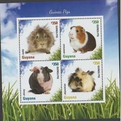 O) 2014 GUINEA- GUYANA, PIG, SOUVENIR MNH