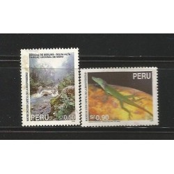 E)1995 PERU, BIODIVERSITY, FOREST, ANIMAL, MANU NATIONAL PARK, ANOLIS PUNTATUS