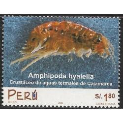 B)2001 PERU, AMPHIPODA HYALELLA, CRUSTÁCEO OF AGUA TERMALES OF CAJAMARCA, SC 1302 A609, MNH