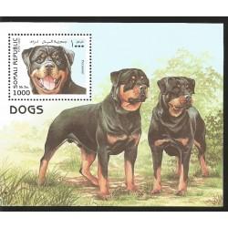 V) 1997 SOMALIA, DOGS, DOG ROTTWEILER, SOUVENIR SHEET, MNH