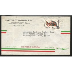 J) 1973 MEXICO, MEXICO TOURIST, TEHUANA OAXACA, AIRMAIL, CIRCULATED COVER, FROM MEXICO TO MINNEAPOLIS