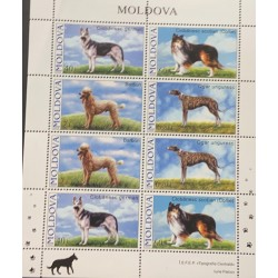 A) 2006, MOLDOVA, DOGS, GERMAN SHEPHERD, COLLIE, POODLE, HUNGARIAN GREYHOUND, BLOCK OF 8