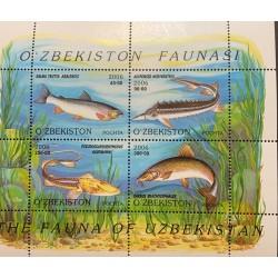 A) 2006, UZBEQUISTAN, LOCAL FISH, SALMO TUTTA ARALESIS