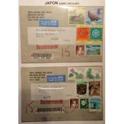 A) 1993, JAPAN, BIRDS AND FLOWERS, AIRMAIL, FROM TOKIO TO MEXICO, OVERCIRCULATED,