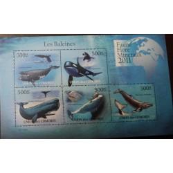 A) 2011, COMORES, WHALES, FAUNA, ORCA, SOUVENIR SHEET OF 5 STAMPS, MNH