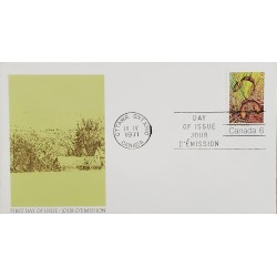 A) 1971, CANADA, SPRING, LETTER FROM OTTAWA, FDC, XF