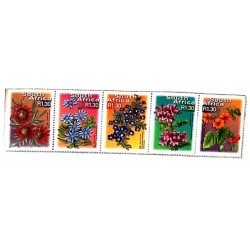 A) 2000, SOUTH AFRICA, FLOWERS, GAZANIA, BLUE DAISY, KAROO VIOLET, TREE GERANIUM, BLACK-EYED SUSANA