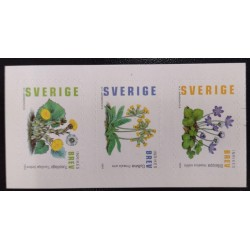 L) 2003 SWDEN, NATURE, FLOWERS, PLANT, TUSSILAGO, MNH
