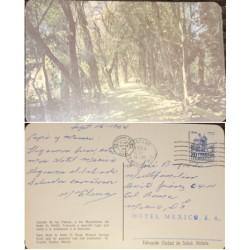 A) 1964 MEXICO, POSTCARD ARBOLES, SLOGAN HOTEL MEXICO, CATEDRAL DE PUEBLA, PERMANENT SERIES 50-75